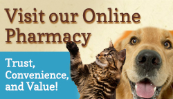 Broadlands / Ashburn, VA - Stream Valley Veterinary Hospital - Visit our online store today!