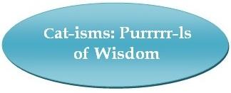 Broadlands / Ashburn, VA - Stream Valley Veterinary Hospital - Cat-isms: Purrrrr-ls of Wisdom