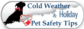 Broadlands / Ashburn, VA - Stream Valley Veterinary Hospital - Cold Weather & Holiday Safety Tips