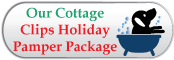Broadlands / Ashburn, VA - Stream Valley Veterinary Hospital - Ask about our Grooming Holiday Pamper Package!