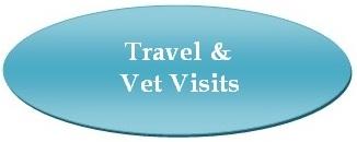 Broadlands / Ashburn, VA - Stream Valley Veterinary Hospital - Travel & Vet Visits