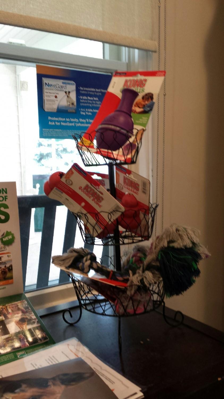 Broadlands / Ashburn, VA - Stream Valley Veterinary Hospital - Toys